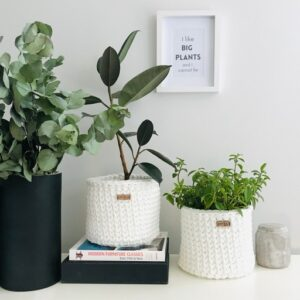 Hanging and standing planters